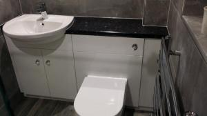 Bathroom Storage including basin and toilet